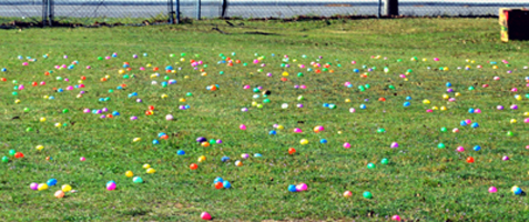 An Easter egg field filled with beautifully colored, candy-filled eggs (2014) - ready for the children.
